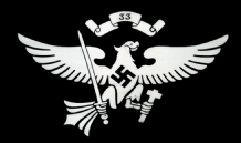 HITLER YOUTH 33RD TROOP (NAZI) - 5 X 3 FLAG
